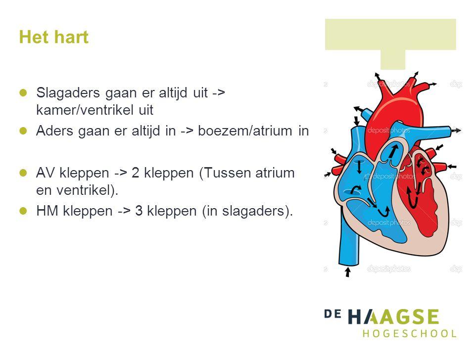 Hartcyclus: systole van atria begint Atria trekken samen -> ventrikels vullen zich extra met bloed