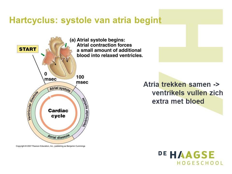 Hartcyclus: systole van atria eindigt boezemdiastole begint