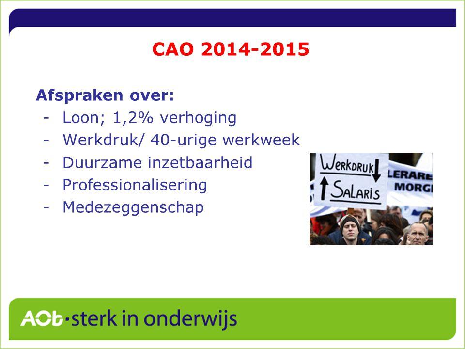 CAO 2014-2015 Afspraken over: -Loon; 1,2% verhoging -Werkdruk/ 40-urige werkweek -Duurzame inzetbaarheid -Professionalisering -Medezeggenschap