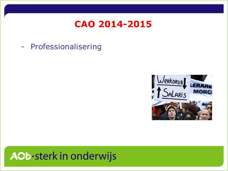 CAO 2014-2015 -Professionalisering