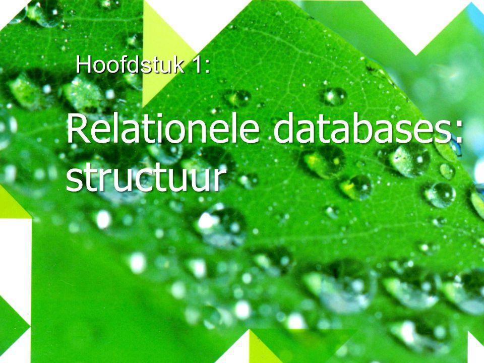 Hoofdstuk 1: Relationele databases: structuur