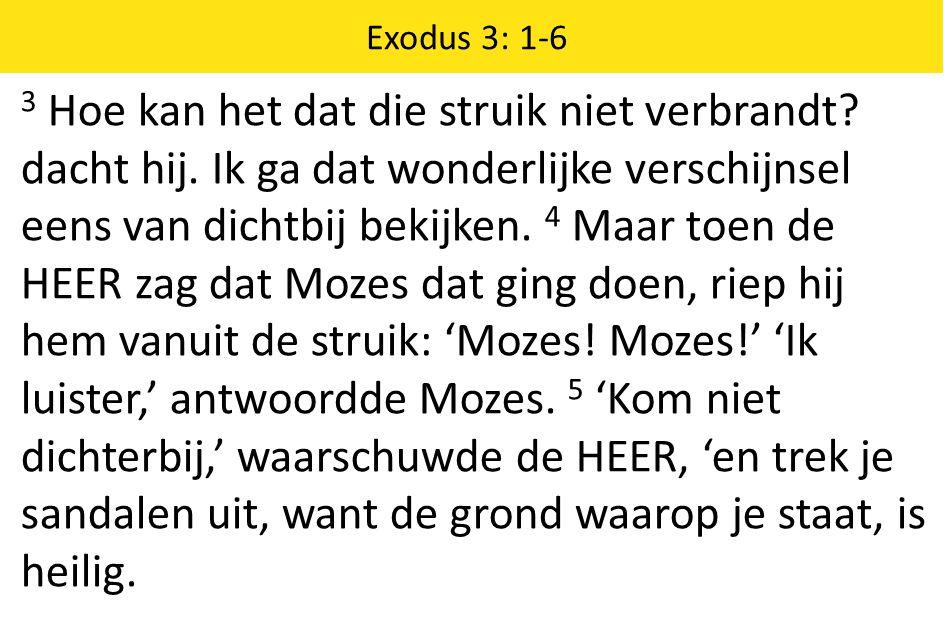 Exodus 3: 1-6 3 Hoe kan het dat die struik niet verbrandt? dacht hij. Ik ga dat wonderlijke verschijnsel eens van dichtbij bekijken. 4 Maar toen de HE