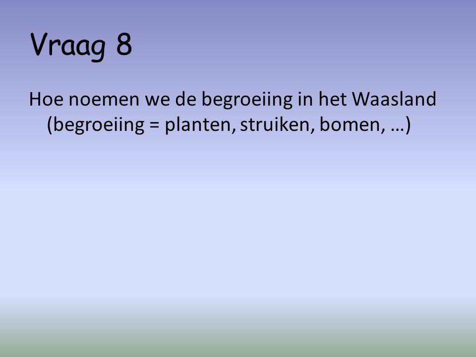 Vraag 8 Hoe noemen we de begroeiing in het Waasland (begroeiing = planten, struiken, bomen, …)