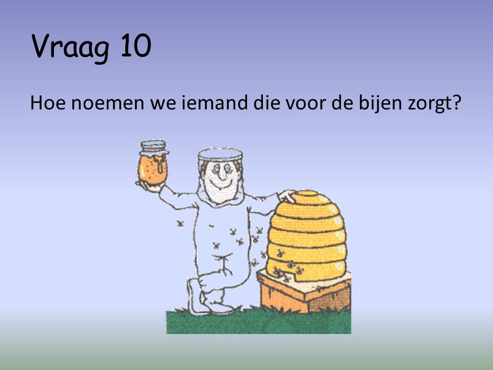 Vraag 10 Hoe noemen we iemand die voor de bijen zorgt?
