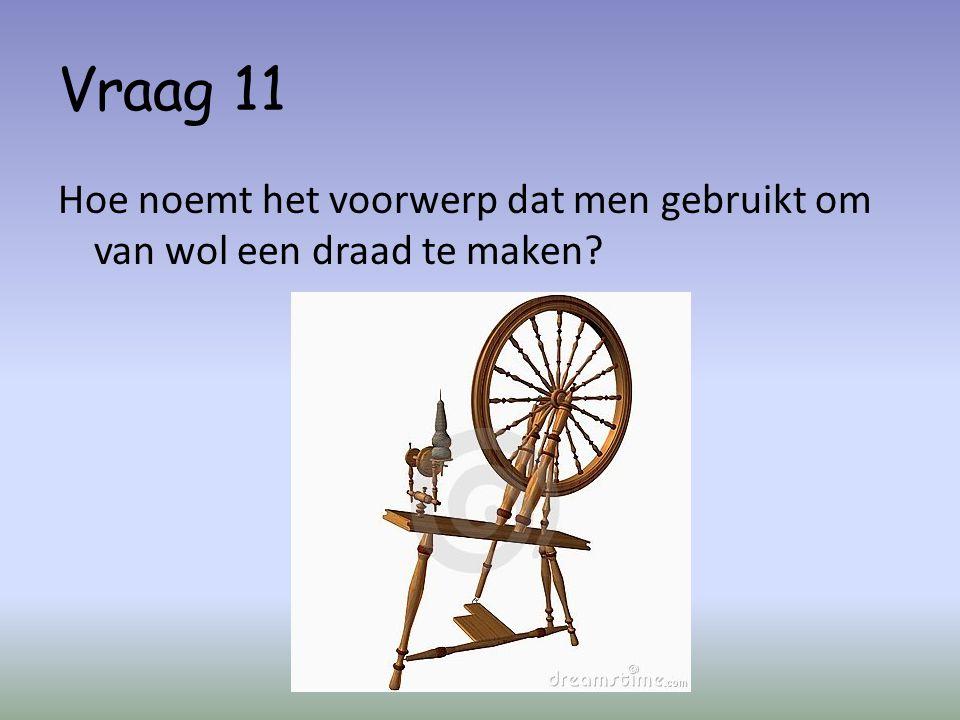 Vraag 11 Hoe noemt het voorwerp dat men gebruikt om van wol een draad te maken?