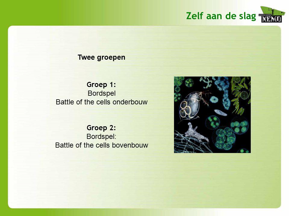 Zelf aan de slag Groep 1: Bordspel Battle of the cells onderbouw Groep 2: Bordspel: Battle of the cells bovenbouw Twee groepen