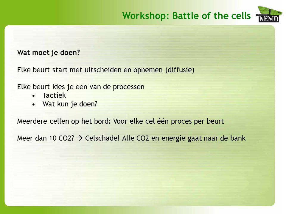 Hoe maak je nieuwe cellen.