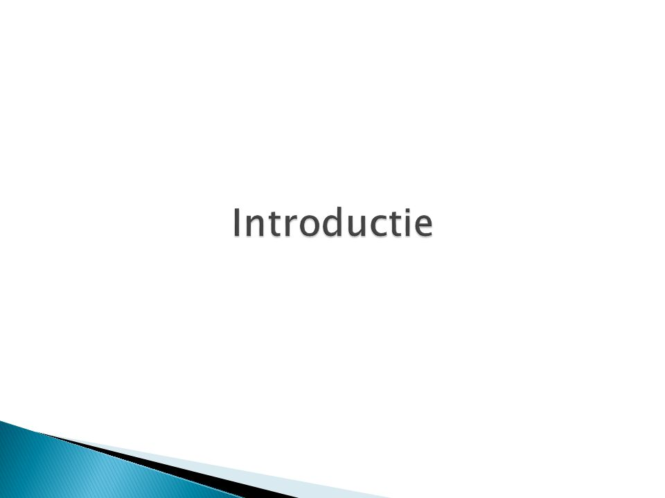  Prijsberekeningssysteem voor de optimale verkoopprijs ◦ Per product ◦ Per verkoopkanaal  Synchronisatie met PIM systeem ◦ Ophalen van productinformatie ◦ Verzenden van prijsinformatie  Dynamisch  Schaalbaar  User friendly