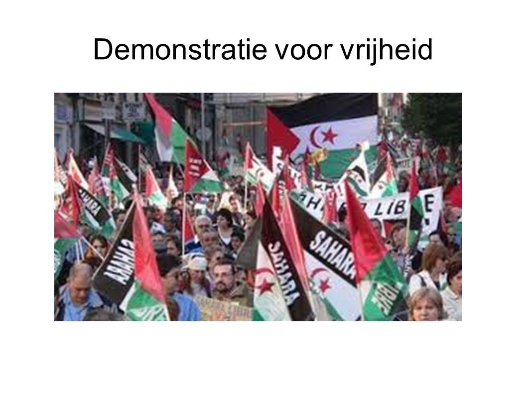 Demonstratie voor vrijheid