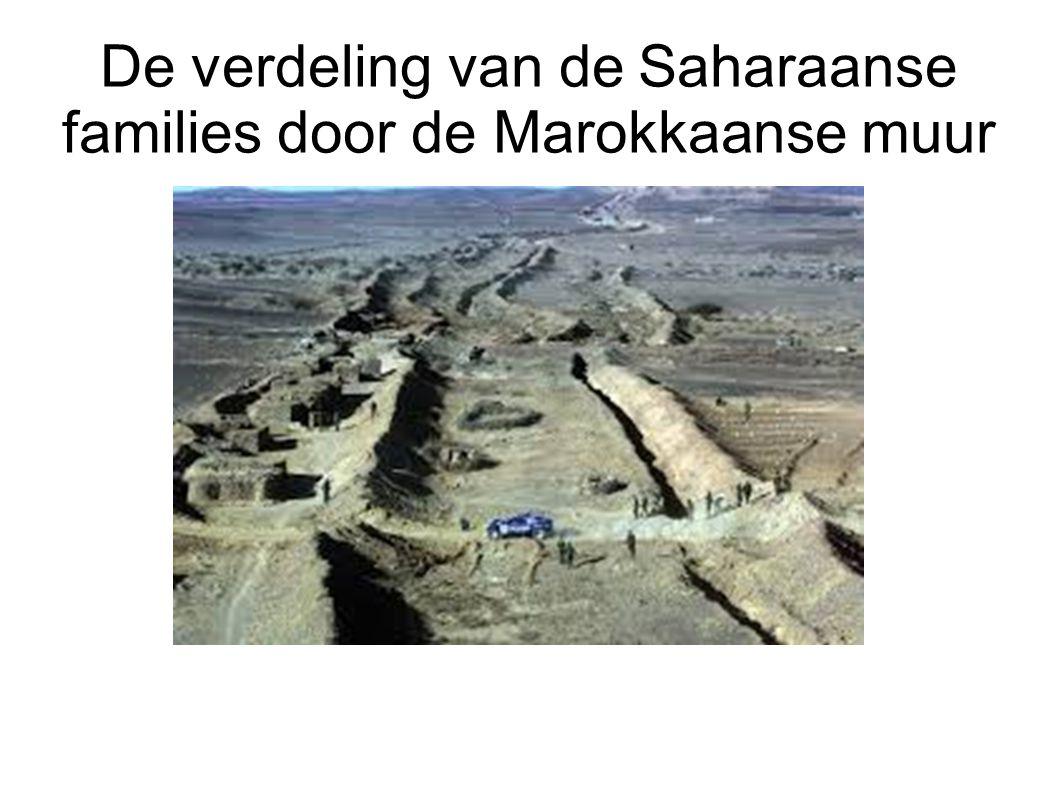 De verdeling van de Saharaanse families door de Marokkaanse muur