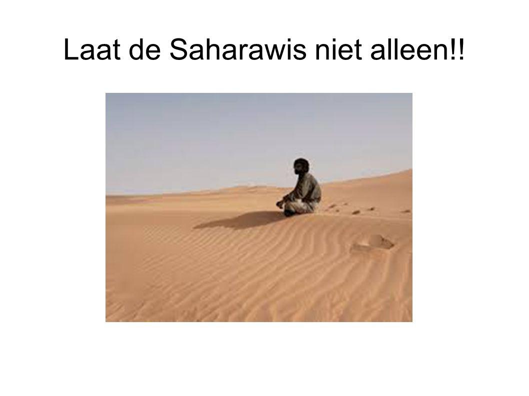 Laat de Saharawis niet alleen!!