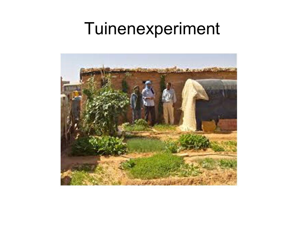 Tuinenexperiment