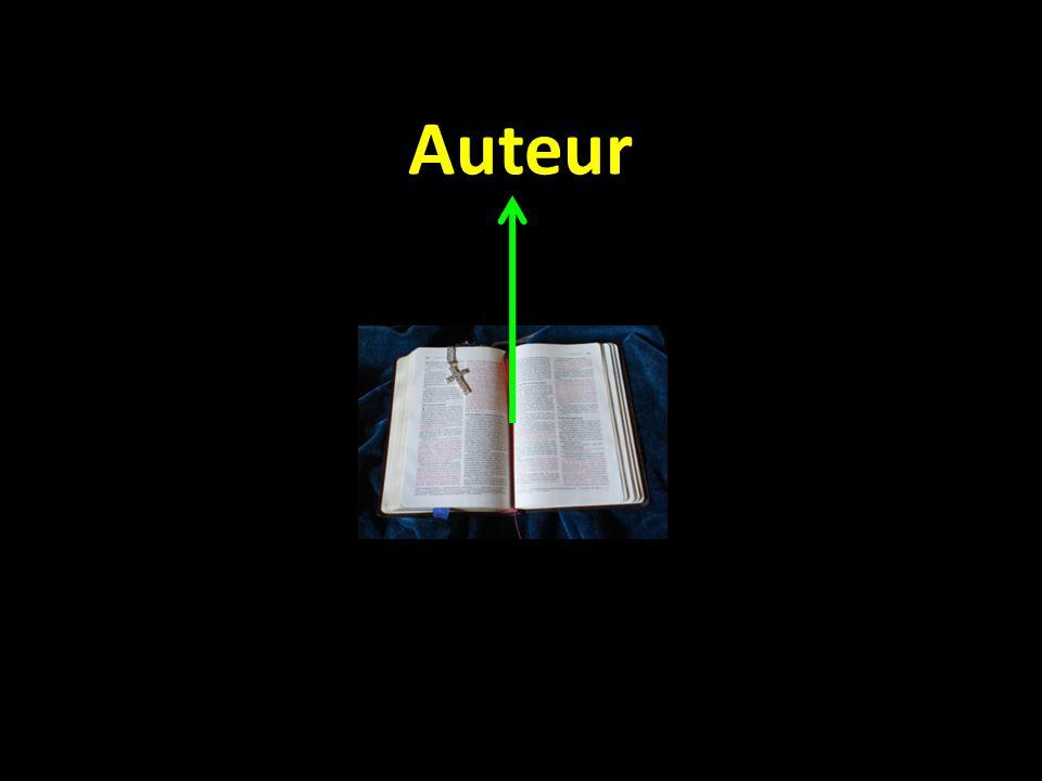 Auteur TekstLezer