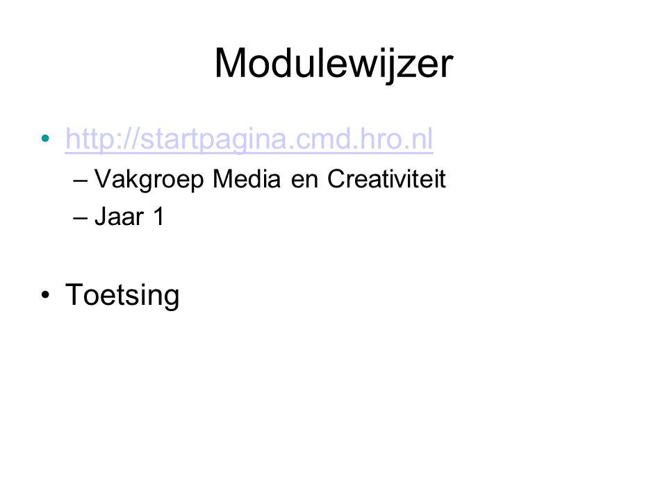 Modulewijzer http://startpagina.cmd.hro.nl –Vakgroep Media en Creativiteit –Jaar 1 Toetsing