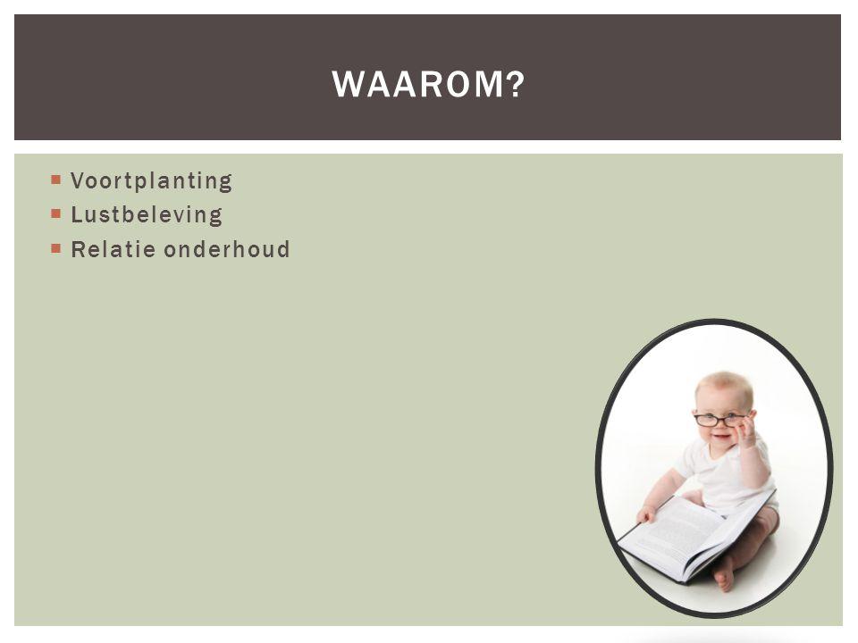  Voortplanting  Lustbeleving  Relatie onderhoud WAAROM?