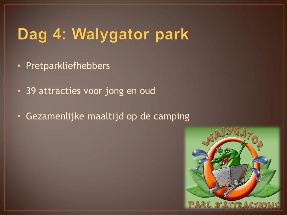 Pretparkliefhebbers 39 attracties voor jong en oud Gezamenlijke maaltijd op de camping