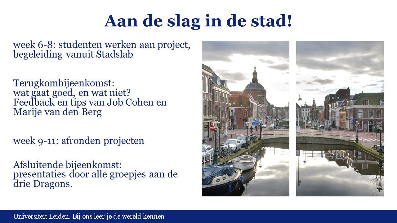 Aan de slag in de stad! week 6-8: studenten werken aan project, begeleiding vanuit Stadslab Terugkombijeenkomst: wat gaat goed, en wat niet? Feedback