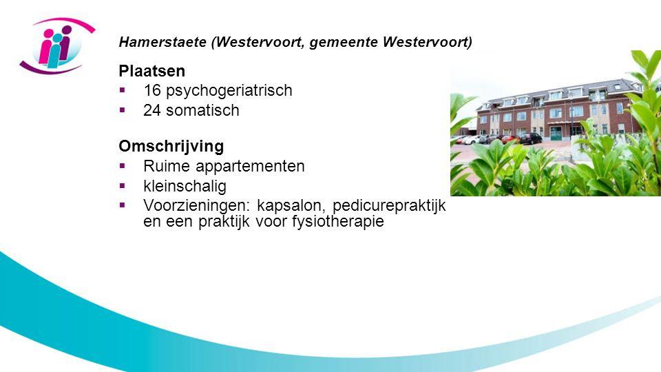 Hamerstaete (Westervoort, gemeente Westervoort) Plaatsen  16 psychogeriatrisch  24 somatisch Omschrijving  Ruime appartementen  kleinschalig  Voorzieningen: kapsalon, pedicurepraktijk en een praktijk voor fysiotherapie