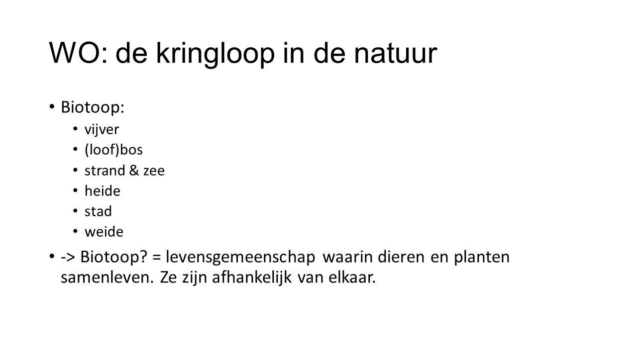 WO: de kringloop in de natuur Biotoop: vijver (loof)bos strand & zee heide stad weide -> Biotoop.