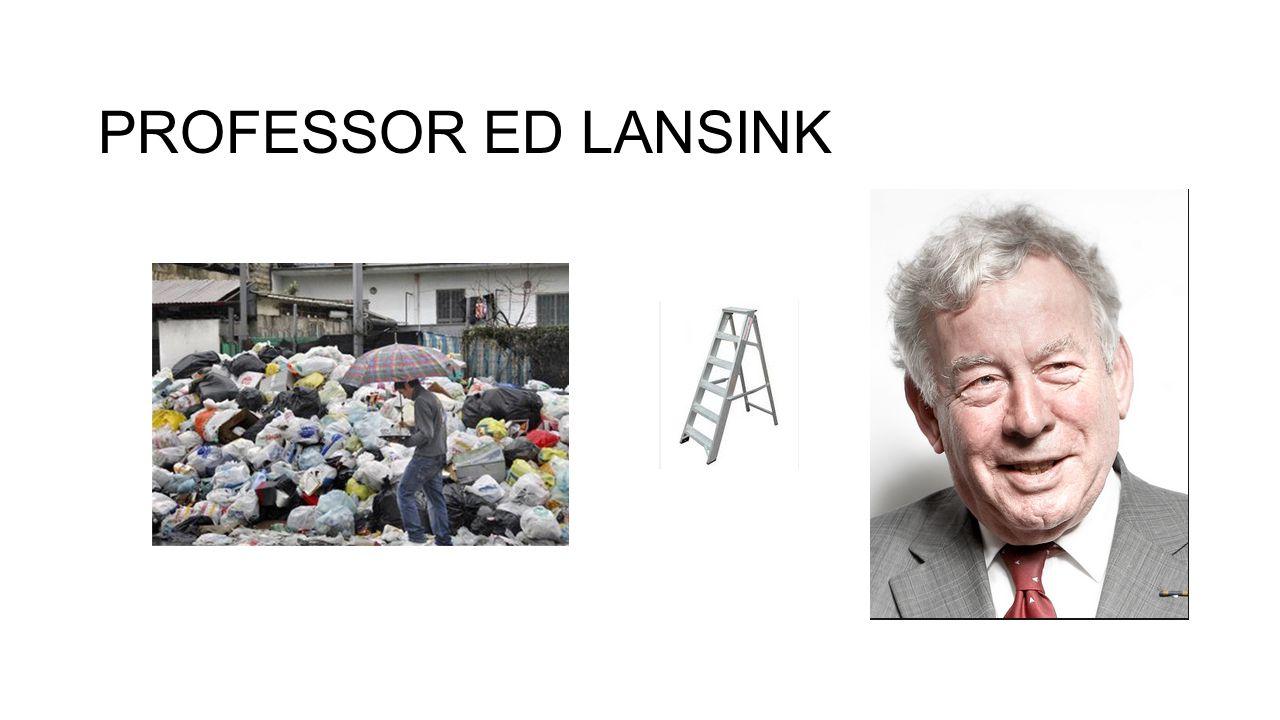 PROFESSOR ED LANSINK