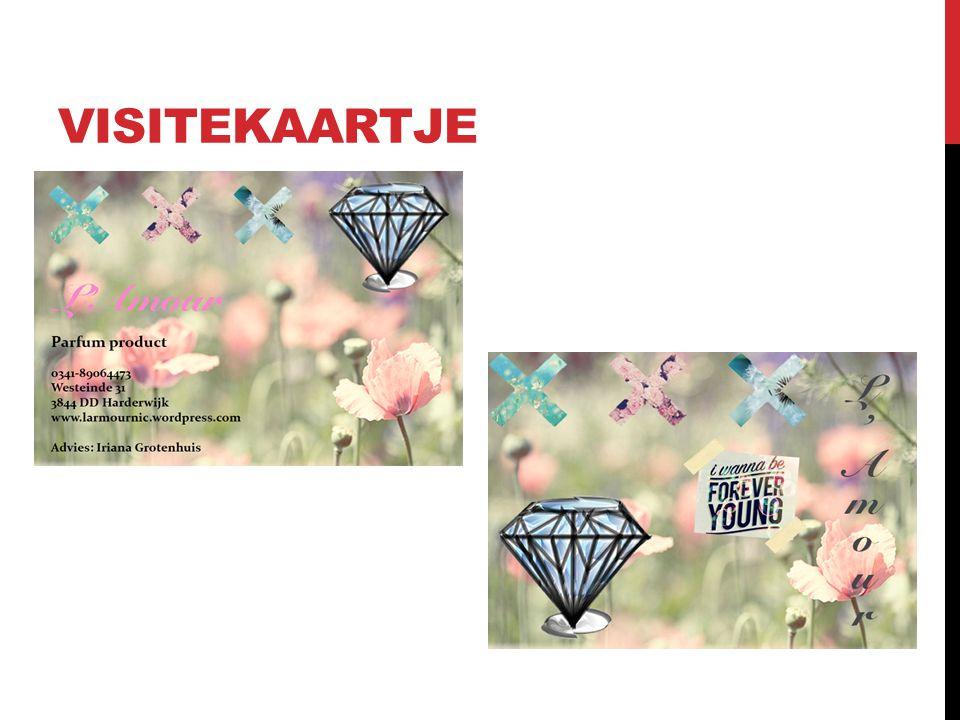 WEBSITE www.larmournic.wordpress.com Door Iriana Grotenhuis
