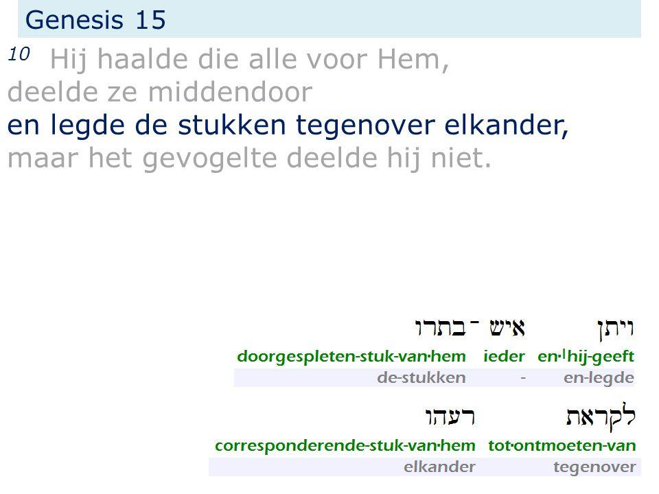 Genesis 15 10 Hij haalde die alle voor Hem, deelde ze middendoor en legde de stukken tegenover elkander, maar het gevogelte deelde hij niet.