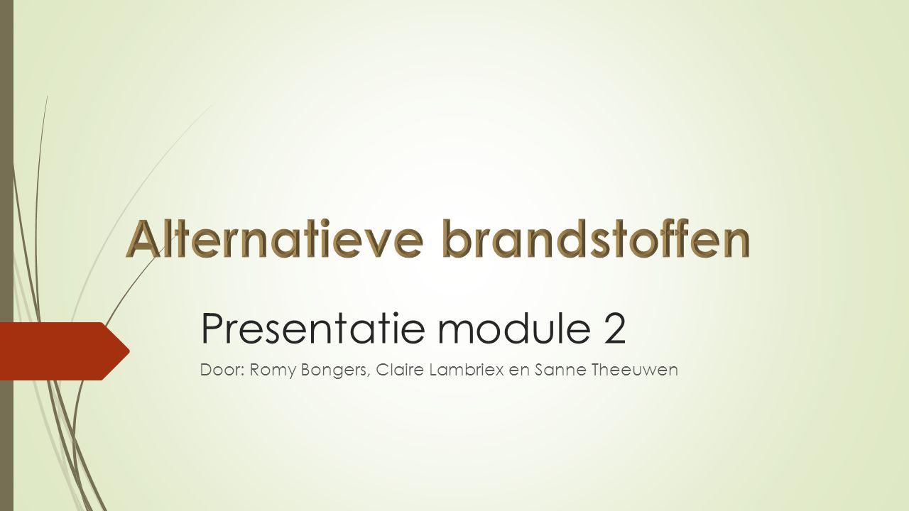 Presentatie module 2 Door: Romy Bongers, Claire Lambriex en Sanne Theeuwen