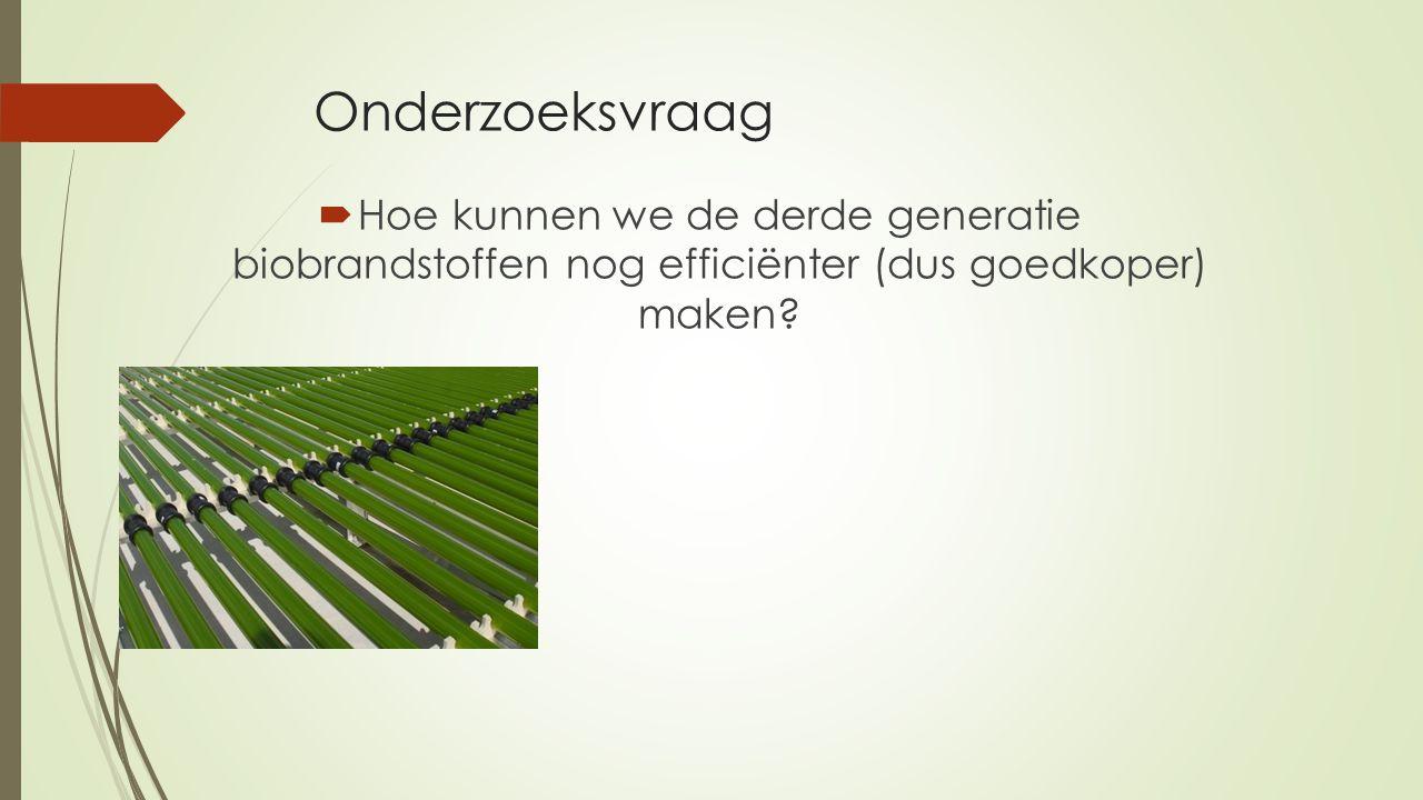 Onderzoeksvraag  Hoe kunnen we de derde generatie biobrandstoffen nog efficiënter (dus goedkoper) maken