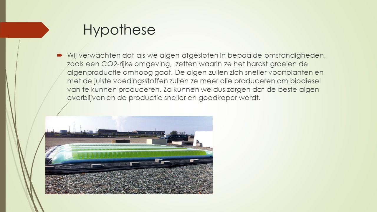 Hypothese  Wij verwachten dat als we algen afgesloten in bepaalde omstandigheden, zoals een CO2-rijke omgeving, zetten waarin ze het hardst groeien de algenproductie omhoog gaat.