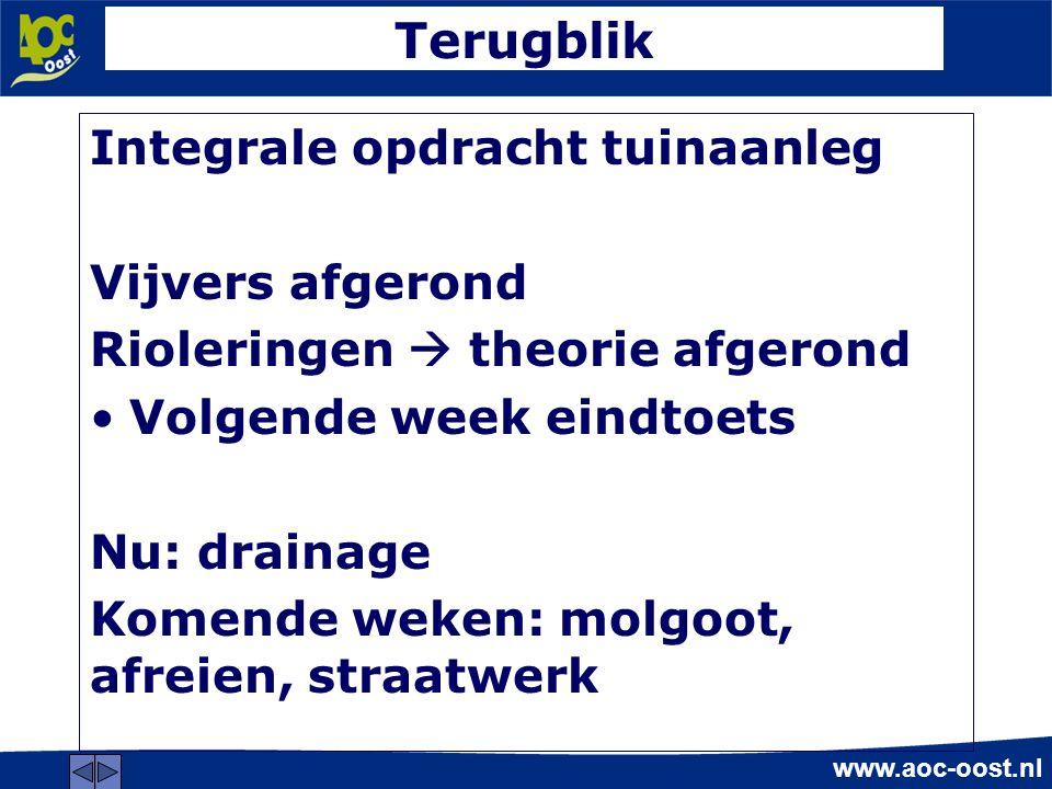 www.aoc-oost.nl Terugblik Integrale opdracht tuinaanleg Vijvers afgerond Rioleringen  theorie afgerond Volgende week eindtoets Nu: drainage Komende weken: molgoot, afreien, straatwerk