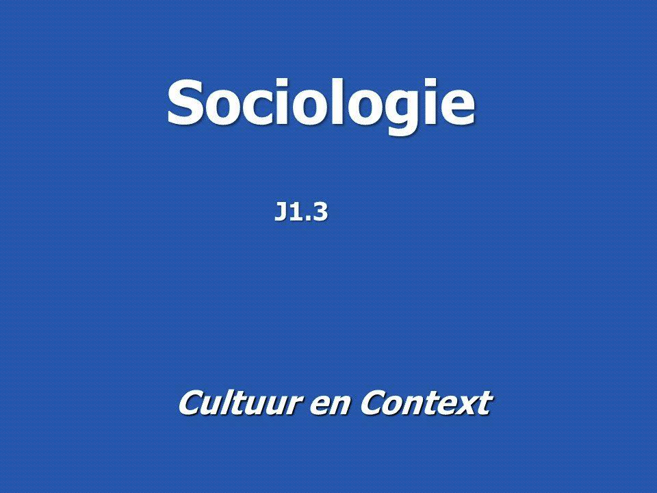 Sociologie Cultuur en Context J1.3