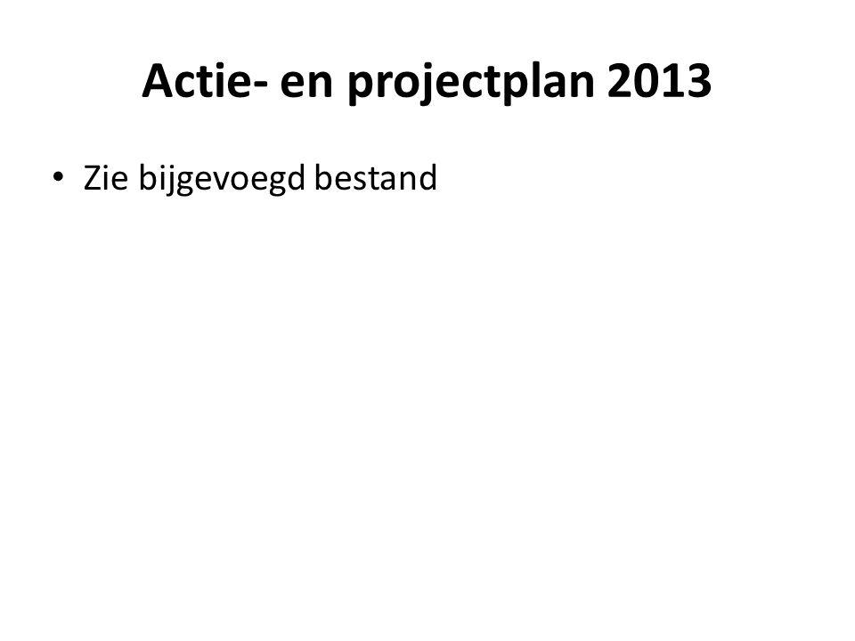 Actie- en projectplan 2013 Zie bijgevoegd bestand