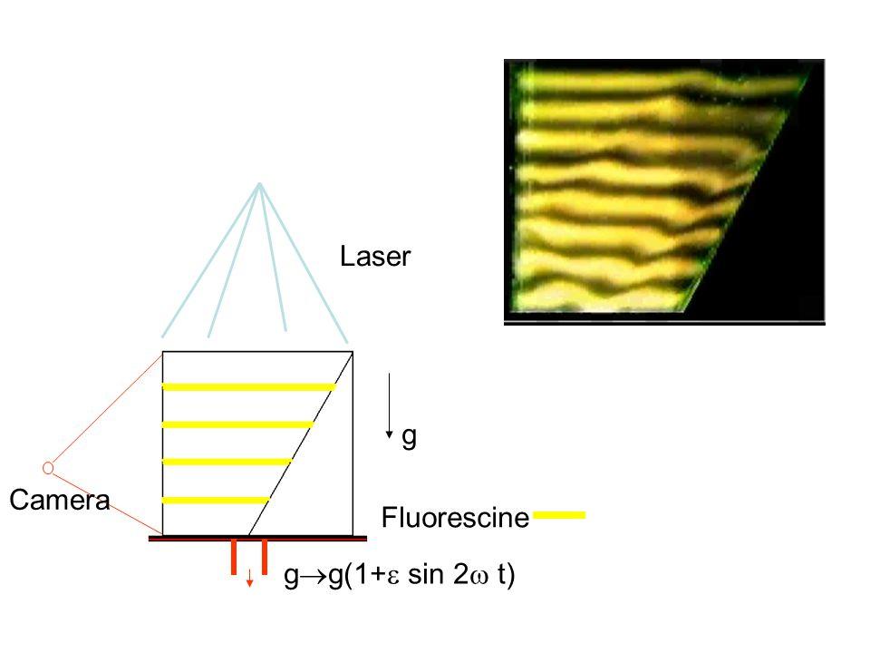 g  g(1+  sin 2  t) Fluorescine Laser Camera g