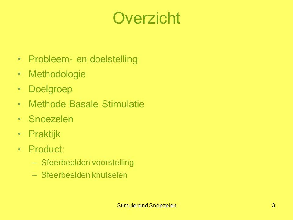 3 Overzicht Probleem- en doelstelling Methodologie Doelgroep Methode Basale Stimulatie Snoezelen Praktijk Product: –Sfeerbeelden voorstelling –Sfeerbe