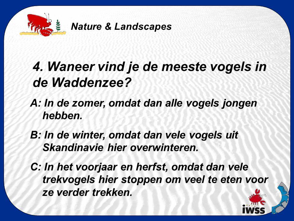 Nature & Landscapes 3. Hoeveel zout zit er in een liter zeewater? A: minder dan 1g B: ongeveer een theelepel (8g) C: ongeveer vier theelepels (32g)
