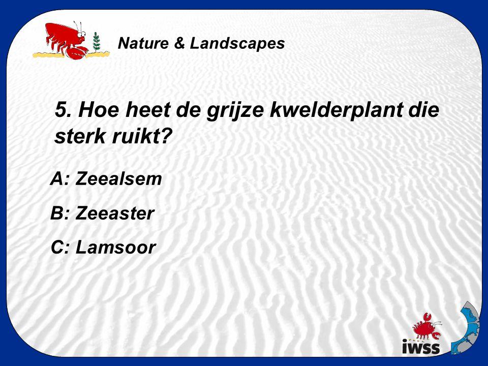 Nature & Landscapes 4. Waneer vind je de meeste vogels in de Waddenzee? A: In de zomer, omdat dan alle vogels jongen hebben. B: In de winter, omdat da
