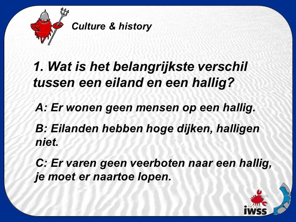 Tweede ronde: Kultur & Geschiedenis