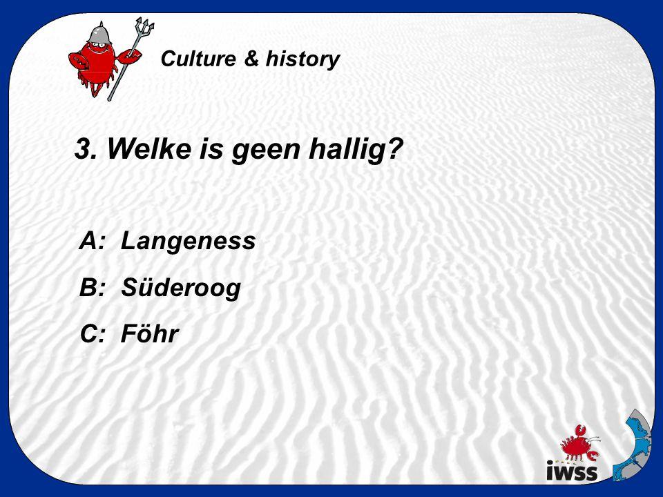 2. Wanneer was de hoogste stormvloed op Hooge en hoe hoog was het? A: in 1976, 944 cm hoog B: in 1985, 888 cm hoog C: in 2003, 1533 cm hoog Culture &