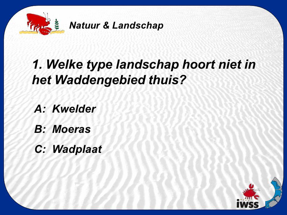 Natuur & Landschap 1.Welke type landschap hoort niet in het Waddengebied thuis.