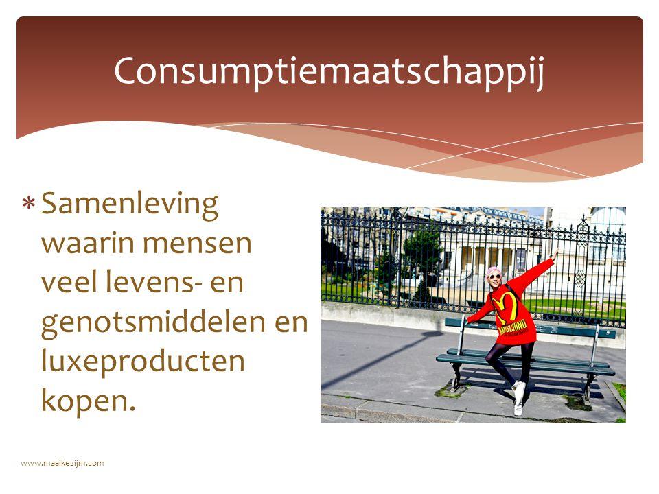  Welvarende economie  Rotterdam kreeg belangrijke functie, havenstad www.maaikezijm.com Nederland