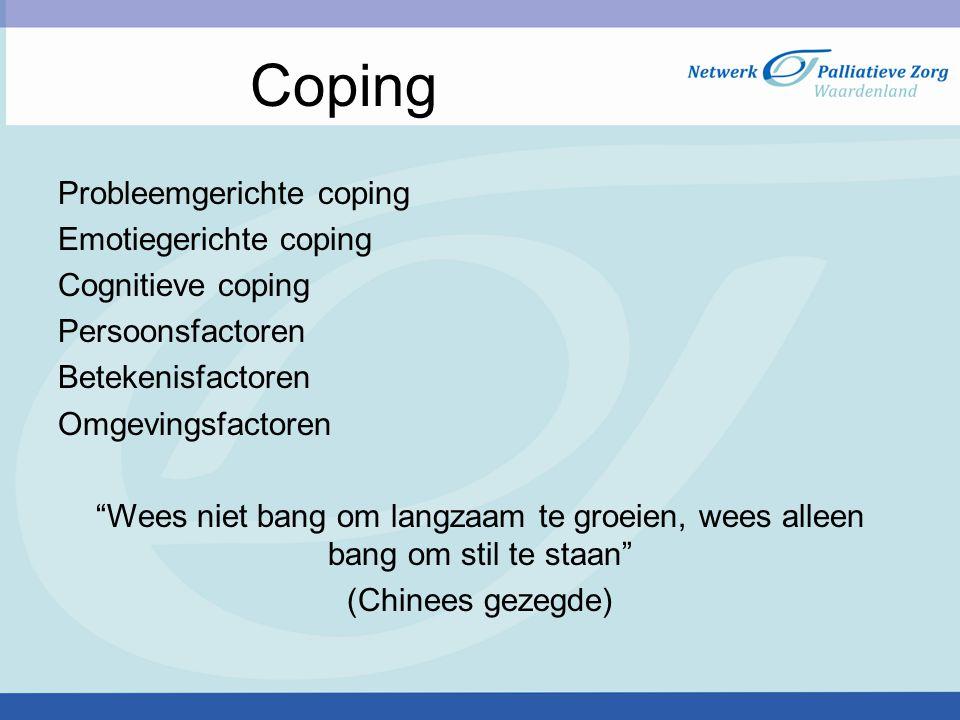 """Probleemgerichte coping Emotiegerichte coping Cognitieve coping Persoonsfactoren Betekenisfactoren Omgevingsfactoren """"Wees niet bang om langzaam te gr"""