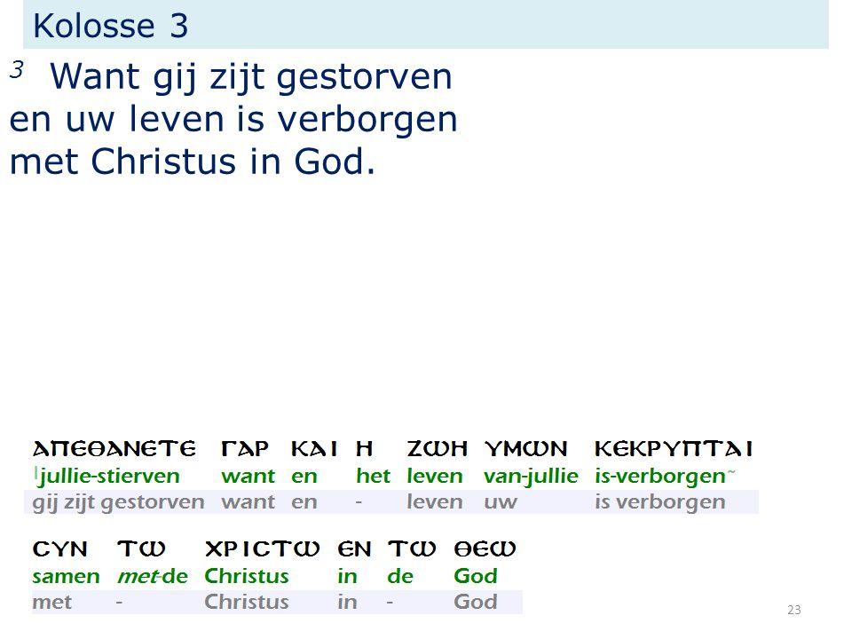 Kolosse 3 3 Want gij zijt gestorven en uw leven is verborgen met Christus in God. 23