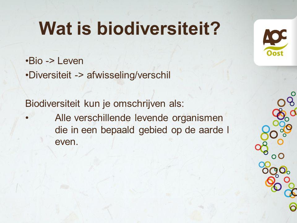 Wat is biodiversiteit.