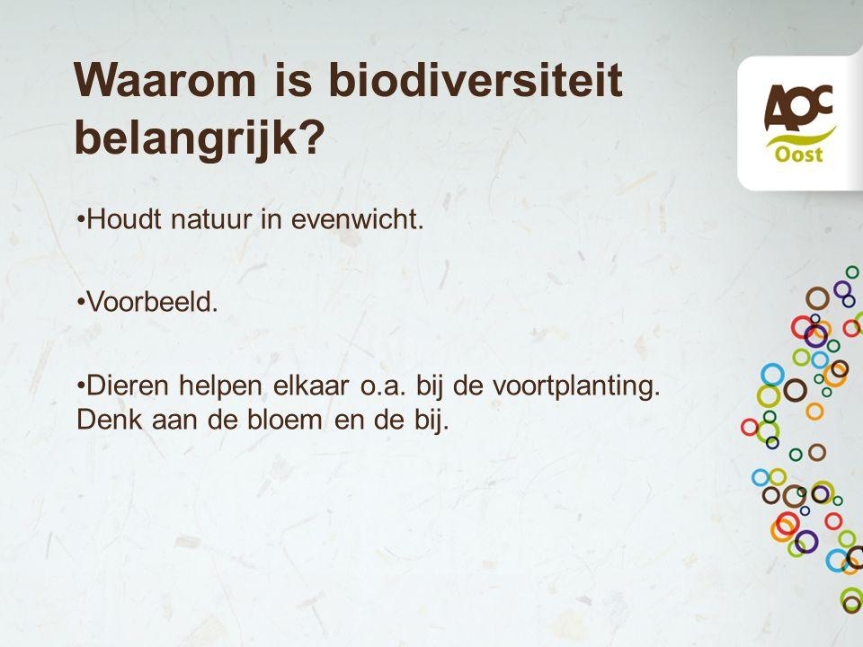 Waarom is biodiversiteit belangrijk.Houdt natuur in evenwicht.
