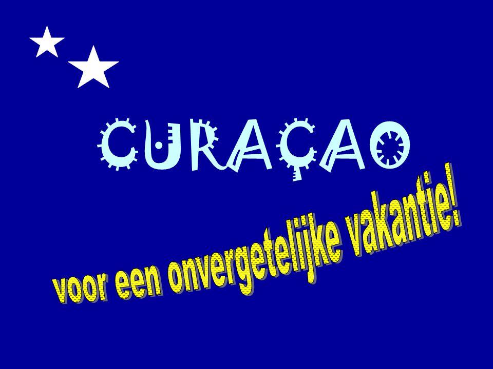 toetsdatum2 INTRODUCTIE Curaçao, het eiland en zijn bewoners ~ Ligging ~ Oppervlakte ~ Bevolking Temperatuur Strand, zee en zon Natuur en cultuur ~ Unieke flora en fauna ~ Opvallende architectuur Activiteiten ~ Excursies ~ Duiken ~ Golf