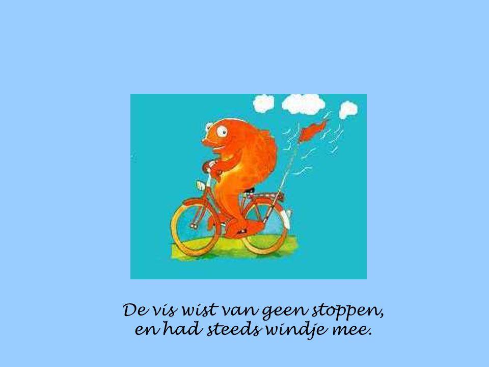 En fietste over zee,