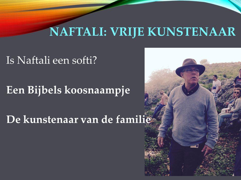 NAFTALI: VRIJE KUNSTENAAR Is Naftali een softi.