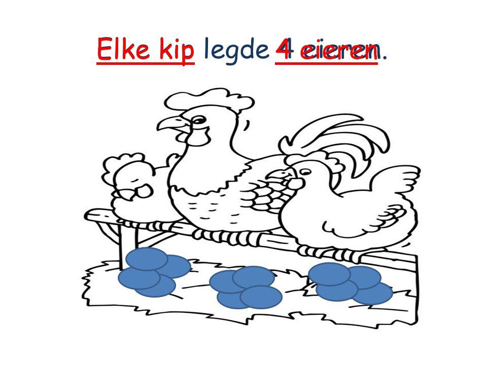 Elke kip legde 4 eieren. 4 eierenElke kip