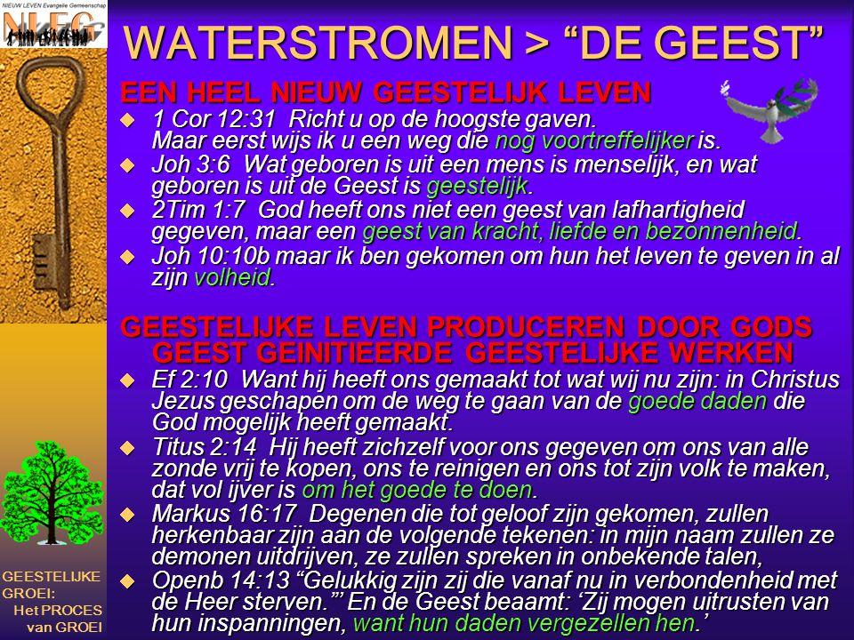 """WATERSTROMEN > """"DE GEEST"""" EEN HEEL NIEUW GEESTELIJK LEVEN  1 Cor 12:31 Richt u op de hoogste gaven. Maar eerst wijs ik u een weg die nog voortreffeli"""