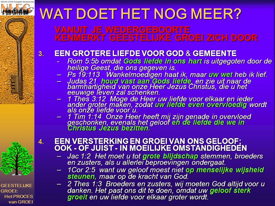 WAT DOET HET NOG MEER? VANUIT JE WEDERGEBOORTE KENMERKT GEESTELIJKE GROEI ZICH DOOR 3. EEN GROTERE LIEFDE VOOR GOD & GEMEENTE -Rom 5:5b omdat Gods lie
